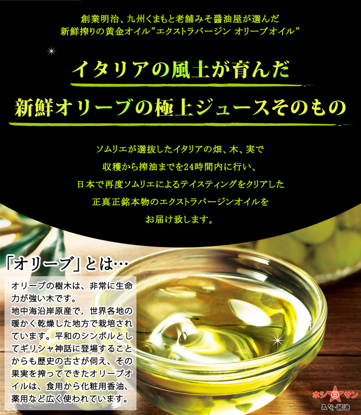 オリーブ油3説明